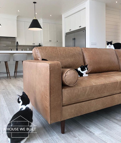 Tremendous Prevent Cats From Scratching Leather Couch All About Foto Short Links Chair Design For Home Short Linksinfo